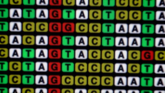 Hanna: DNA Sequence